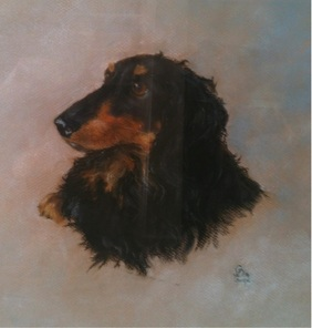 Pastel portrait of a  black & tan Dachshund 'Bertie' by Gloria Dean